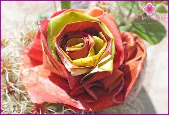 Unusual rose