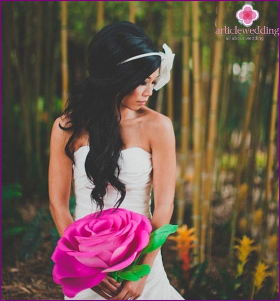 Luxury colors for photo shoot
