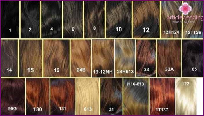 Palette de coloration pour cheveux