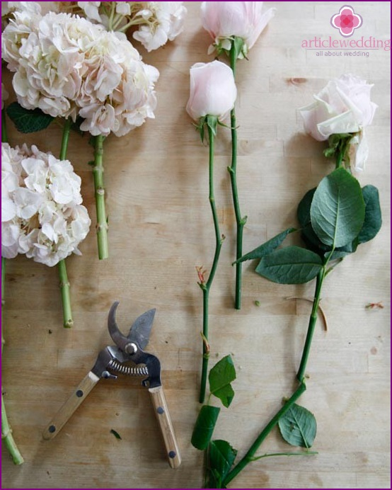 Cut the stems of the roses
