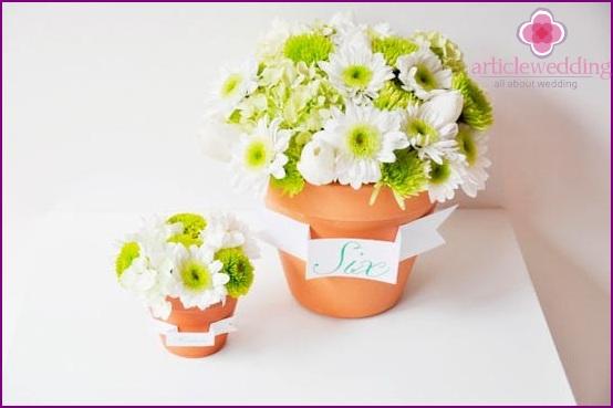 Beautiful pots of flowers