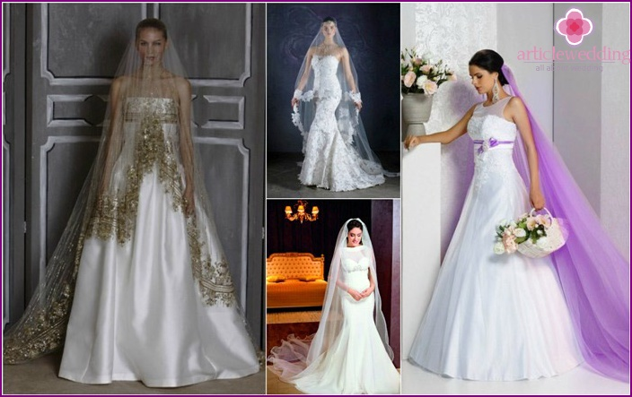 One style veil the bride and dress