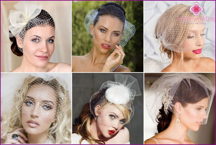 Pictured short birdcage veil
