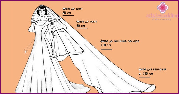 How to determine the size of the veil