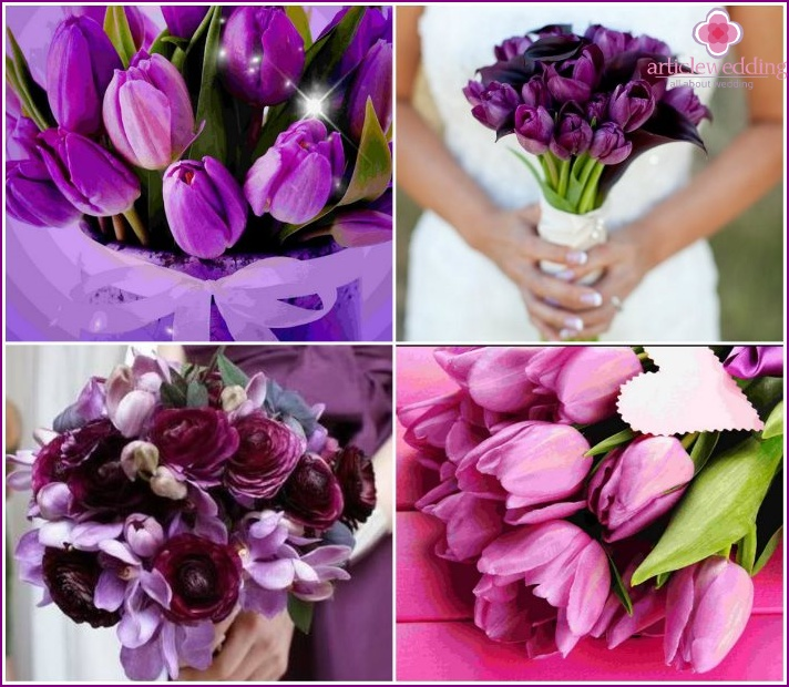 Purple tulips in a bouquet of the bride