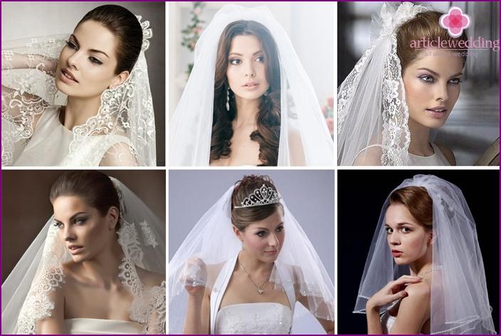Universal model veils