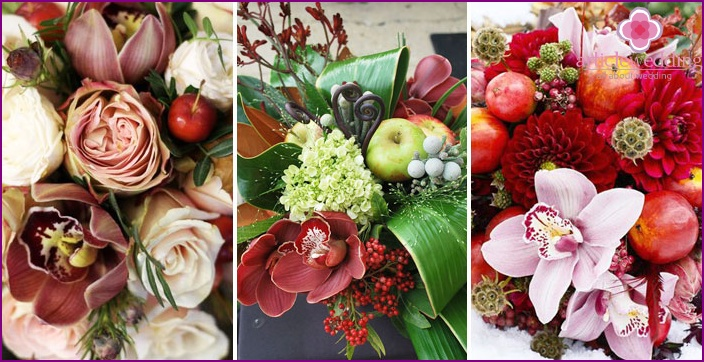 Orchid Ensemble with apples Suite