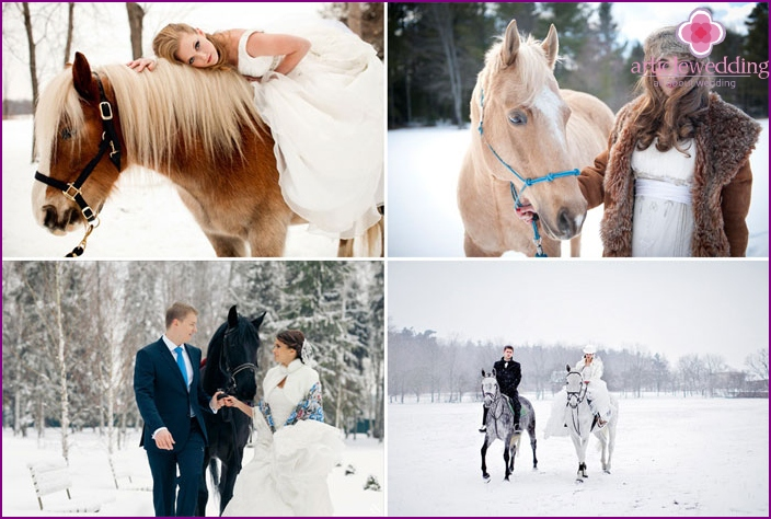 Wedding photography winter with horses