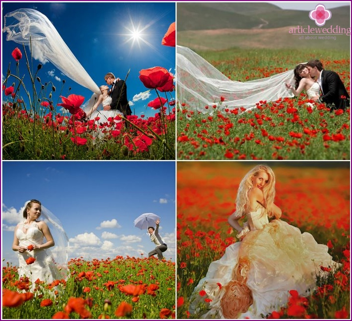 Wedding photo of the newlyweds in a poppy field