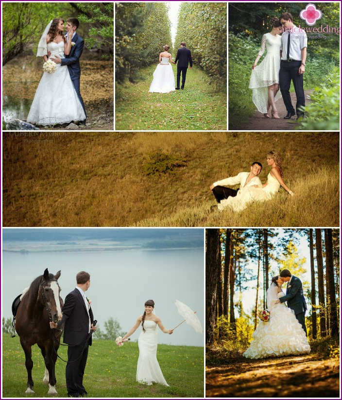 Wedding Pictures in nature