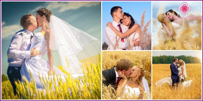 Wedding photography in the field