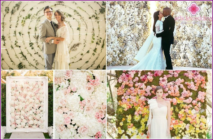 Photo Wall with fresh flowers