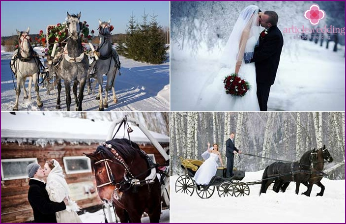 Winter wedding photo shoot in a troika of horses