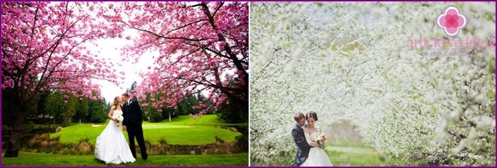 April's wedding photo shoot