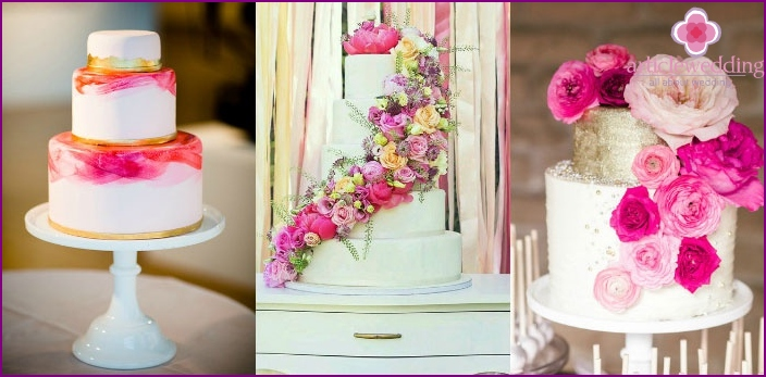 Variants of wedding cakes for the wedding