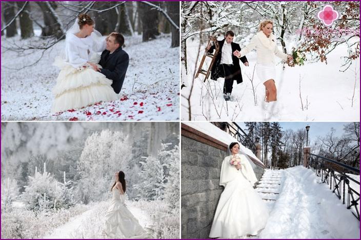 Wedding photos of the February wedding
