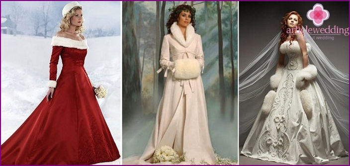 Christmas winter bride is different motives