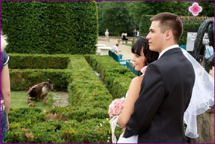 Wallenstein garden - the perfect place for a wedding