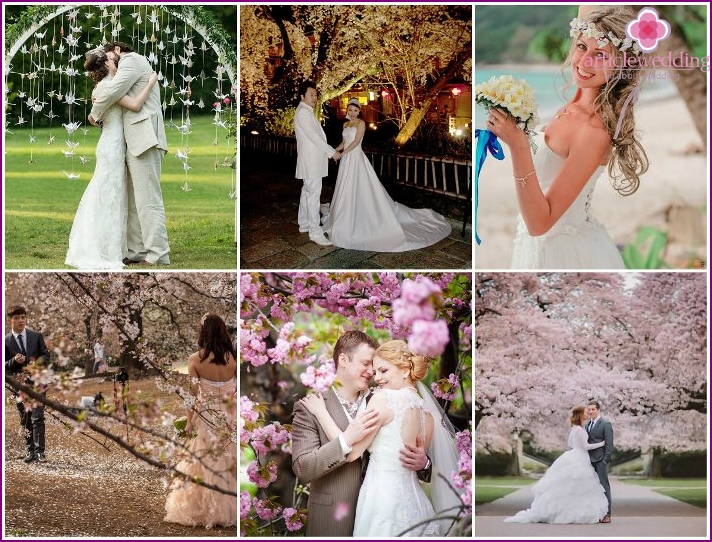 Sample wedding with sakura