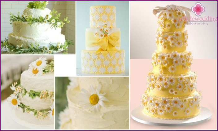 Excellent options for the wedding cake with daisies