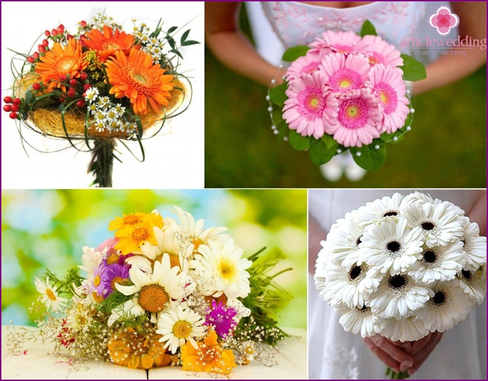 Gerbera and daisies - flowers for the young