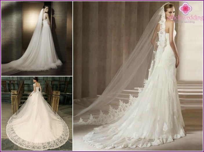 Photo of wedding dresses: full skirt + plume