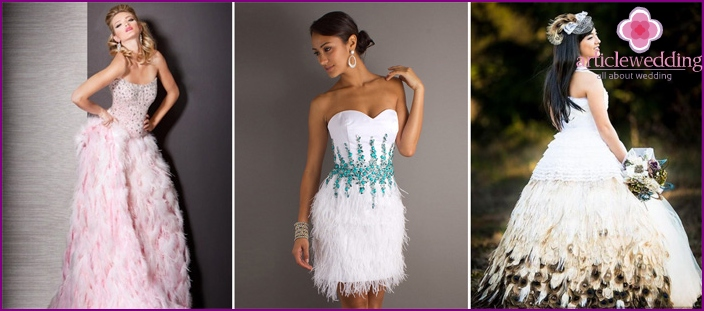 Bird feathers to decorate wedding dresses