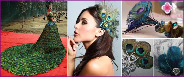 Peacock feather dress as a basis to svdabu