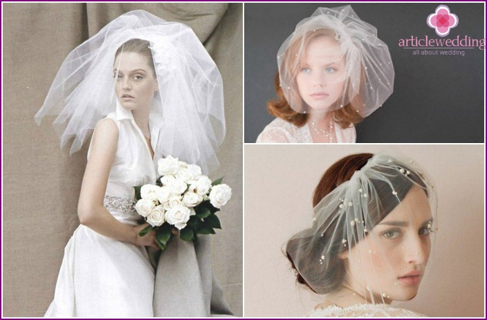 Short veil for the bride to a low
