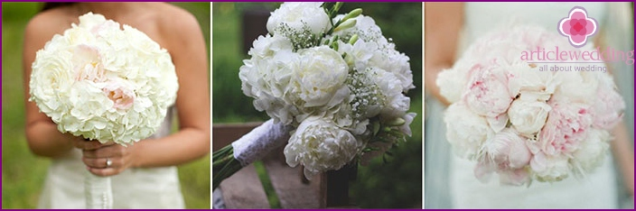 Peonies in the image of a bride