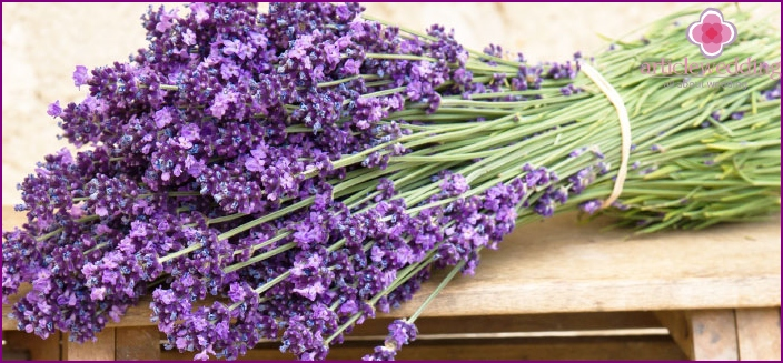 Lavender flowers live well with other plants
