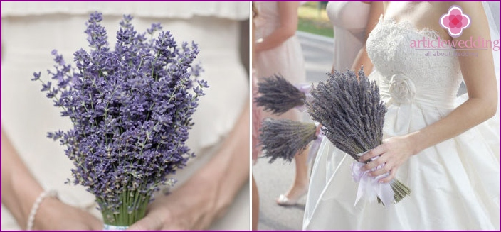 Lavender is combined with blue-blue flowers