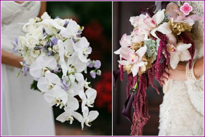 Attributes with lilies orchids