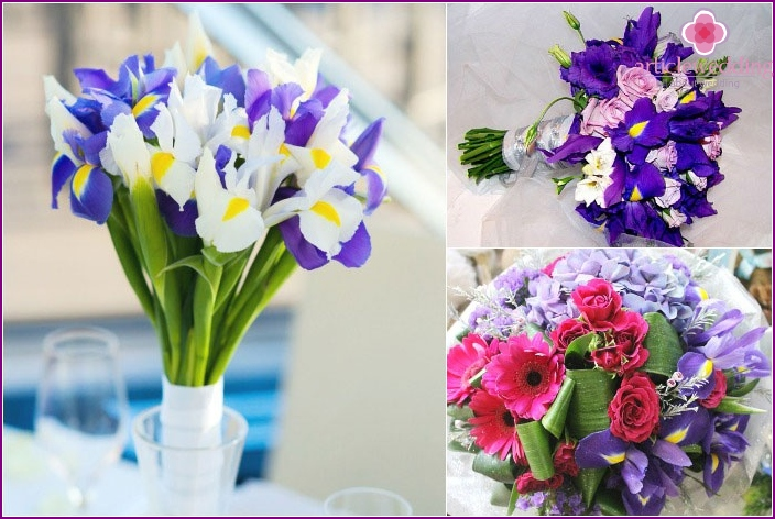Beautiful options of wedding bouquets with iris