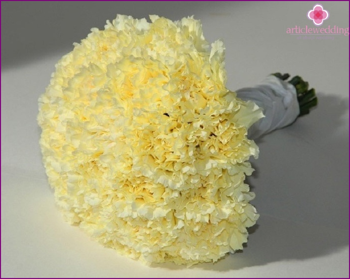 Yellow carnation - a symbol of wisdom and friendship