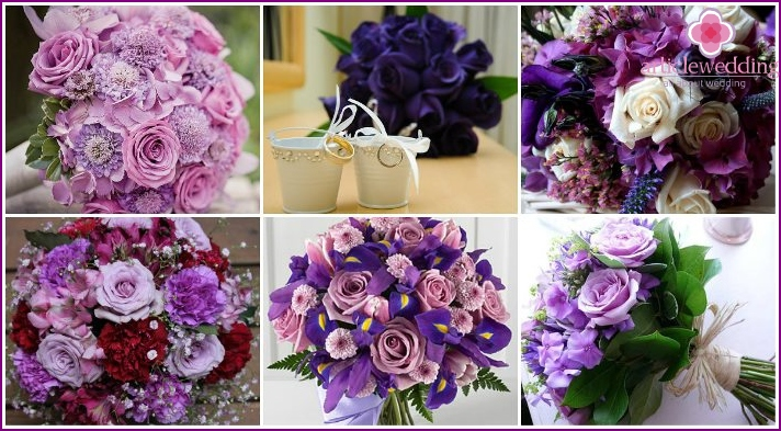 Purple roses in a bouquet of the bride