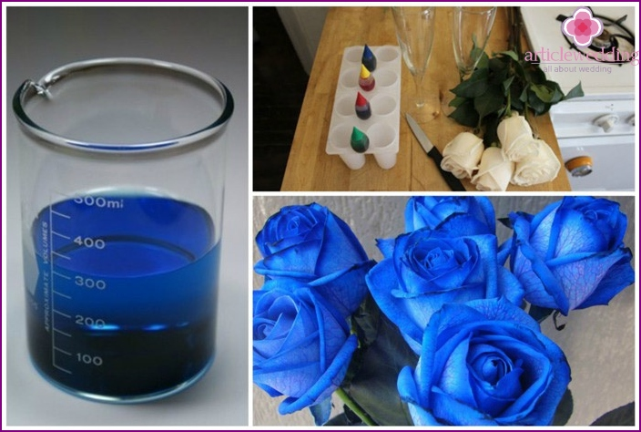 How to get blue roses