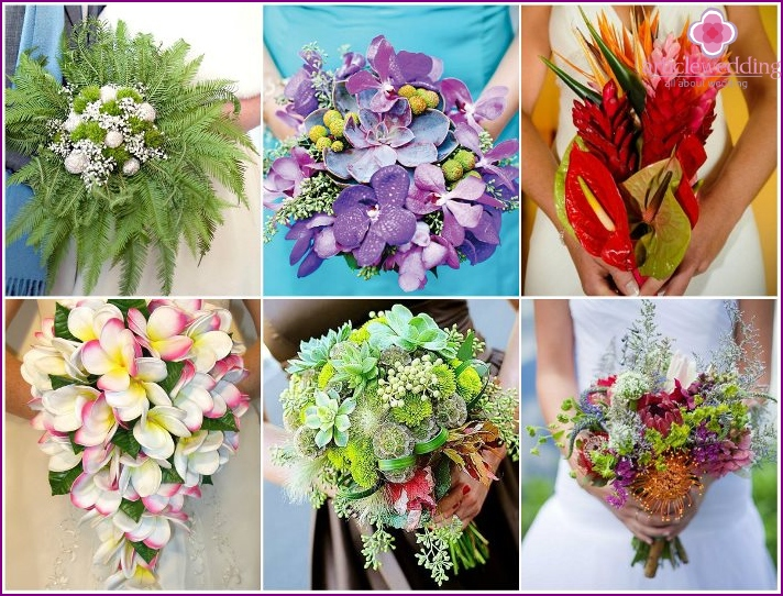 Exotic flowers for design bouquet