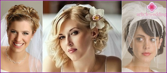Veil - a great accessory for brides shorthair
