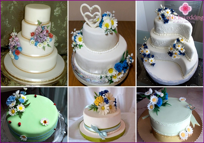 Cake in the Ukrainian style with wildflowers