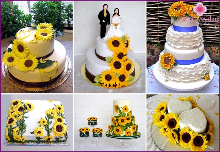 Cake in the Ukrainian style with sunflowers
