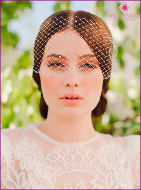 Veil for the hairstyle of the bride