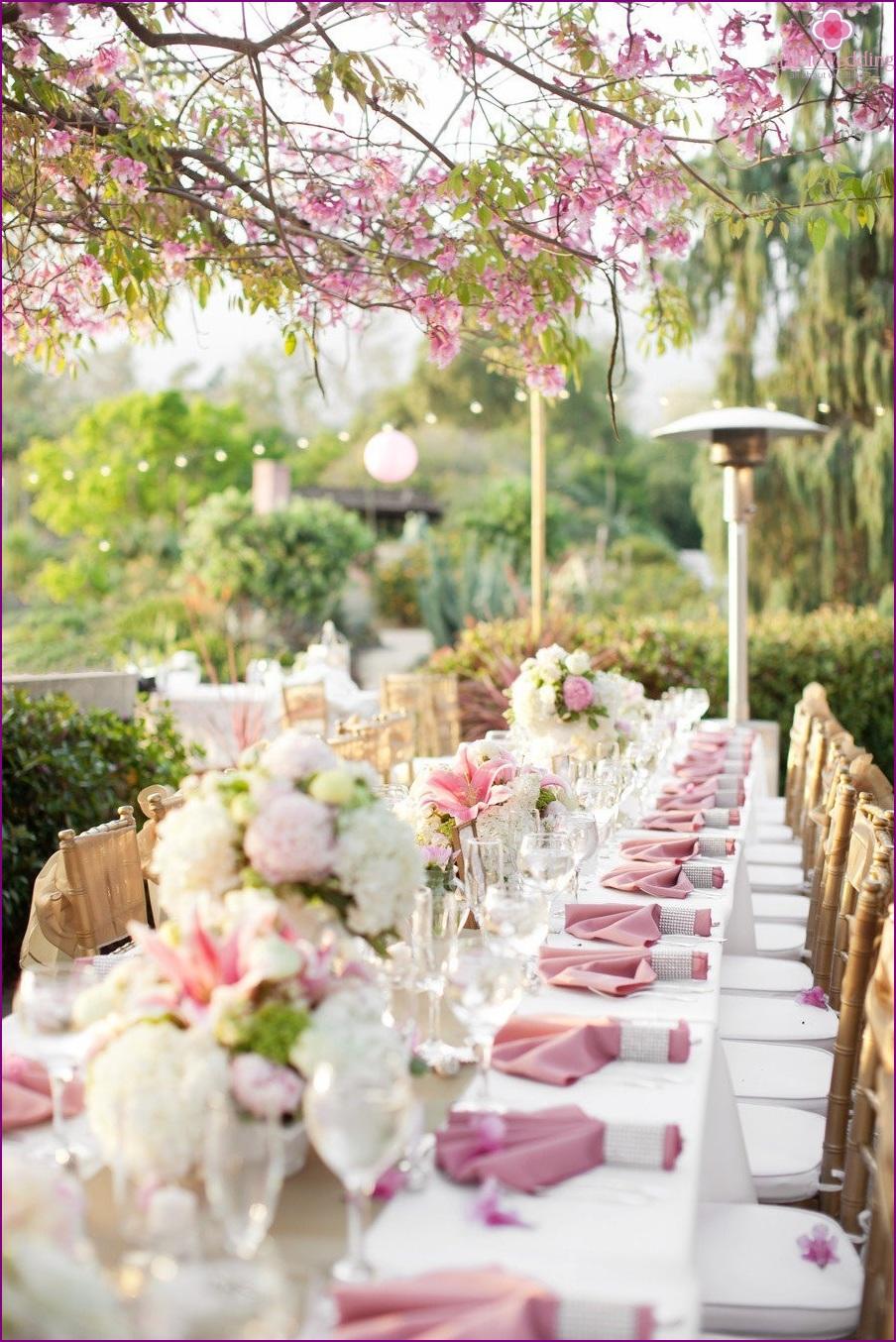 Outdoor banquet
