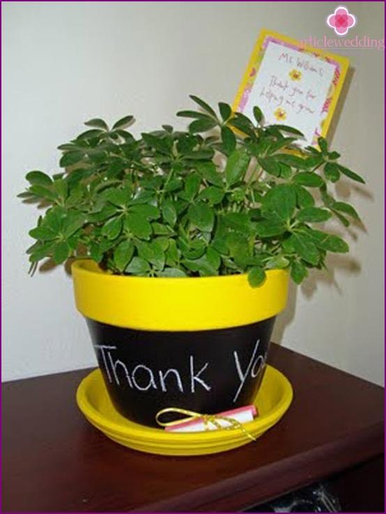 Modified flower pot