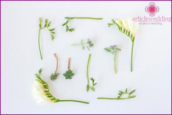 Prepare flowers and plants