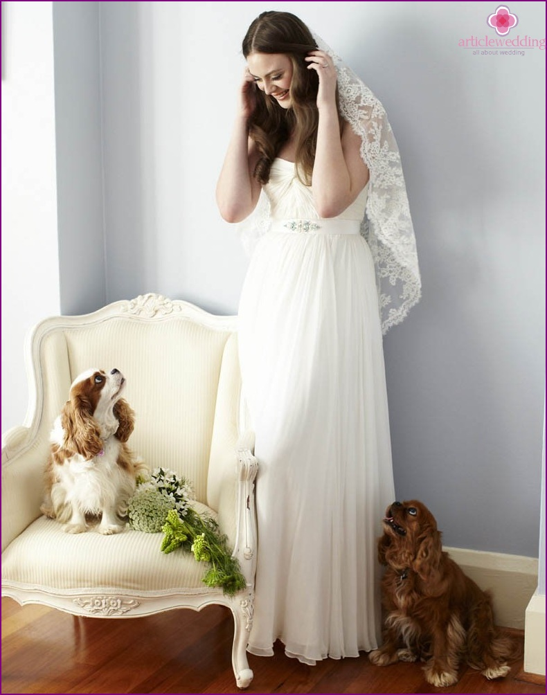 Bride and Pets