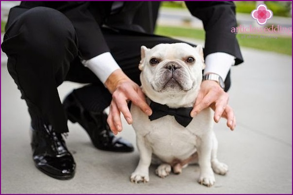 The main guest at the wedding