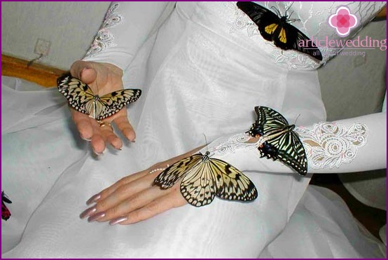 Butterflies for the wedding