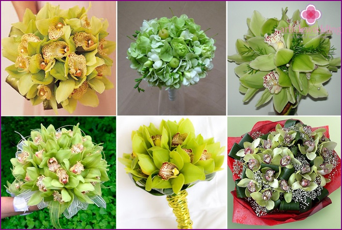 Green orchids for honeymoon