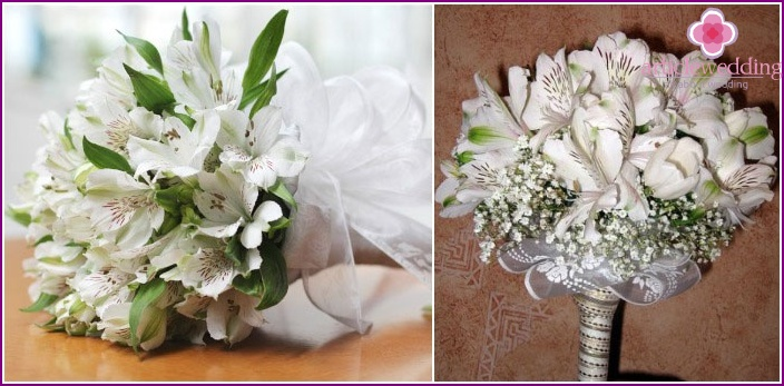 Mono-bouquet of white inflorescences